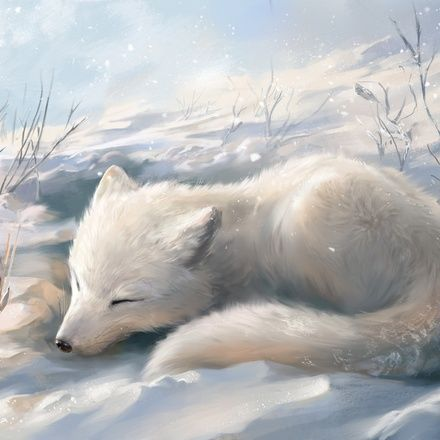 Arctic Fox An Art Print By Ludvik Skp Animated Animals Kawaii Animals Cute Baby Animals