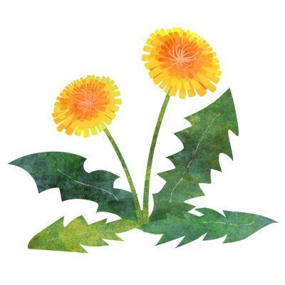 花 おしゃれまとめの人気アイデア pinterest nnn sachiko 花 イラスト 花 イラスト 無料 タンポポ イラスト
