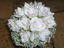 Curcuma Bouquet Sposa.Risultati Immagini Per Curcuma Fiore Bianco Con Immagini Fiori