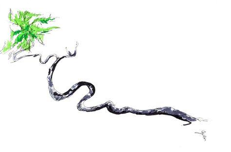 Snake Tree, Pen Setch