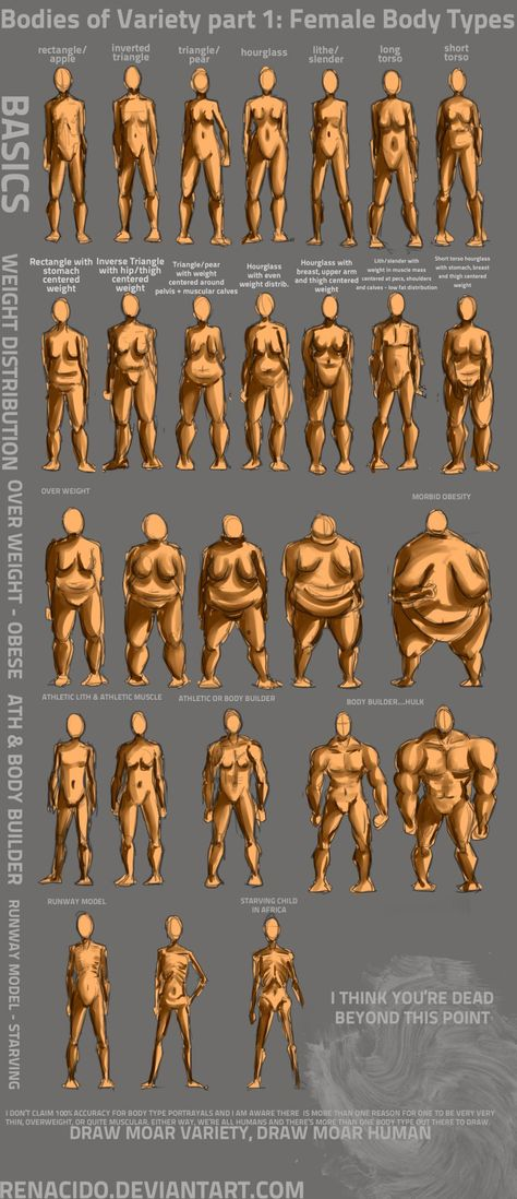 Bodies of Variety pt Female body types by Spelledeg on DeviantArt