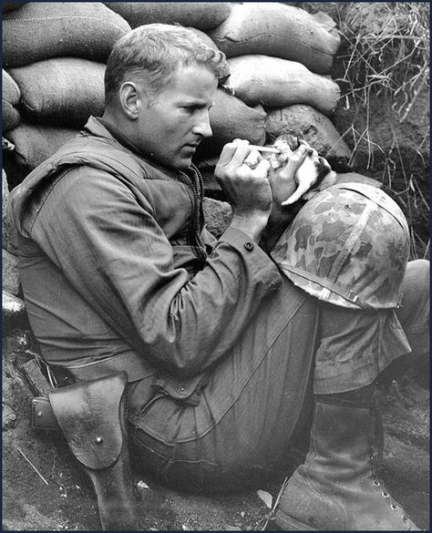 """""""Accepting her fate as an orphan of war, 'Miss Hap' a two-week old Korean kitten chows down on canned milk, piped to her by medicine dropper with the help of Marine Sergeant Frank Praytor … The Marine adopted the kitten after its mother was killed by a mortar barrage near Bunker Hill. The name, Miss Hap, Sergeant Praytor explained, was given to the kitten 'because she was born at the wrong place at the wrong time'."""" Korea, ca 1953"""