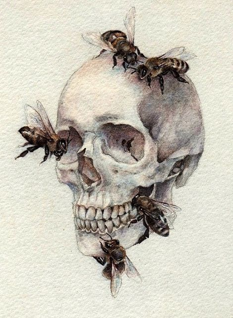 Watercolour Skull painting created by Ukrainian artist Nikolay Tolmachev Inspiration Art, Art Inspo, Art And Illustration, Skull Painting, Skull Artwork, Bee Painting, A Level Art, Skull And Bones, Skull Art