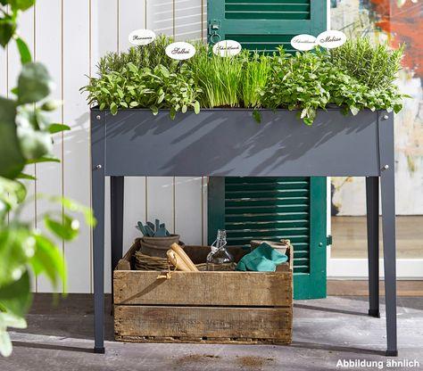 Pin Von Kp Auf Balkon In 2020 Garten Hochbeet Hochbeet Krauterbeet