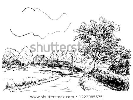 Sketch Of Countryside Landscape With House Road And Big Oak Tree Hand Drawn Vector Illustration Countryside Landscape Nature Sketch Landscape Sketch