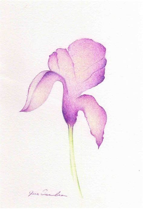 Image Result For Iris Flower Drawing Easy Flower Drawing Iris Drawing Iris Flowers