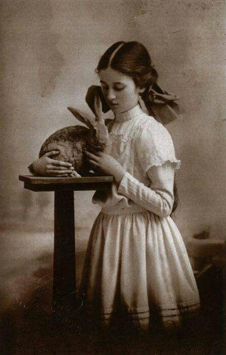 Beatrix Potter                                                                                                                             More