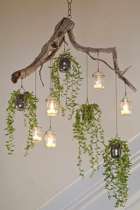 Found materials and small trailing succulents can be combined to make a charming chandelier.