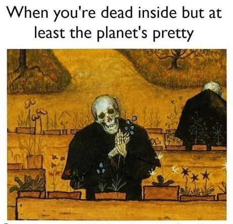 Medieval Memes From The Bleak Days Of The Middle Ages Medieval Memes Art History Memes Funny Art History