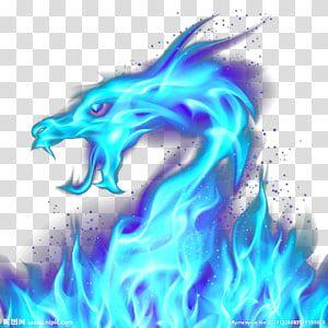 Blue Flame Dragon Dragon Fire Blue Illustration Blue Dragon Transparent Background Png Clipart Dragon Illustration Dragon Silhouette Fire Dragon