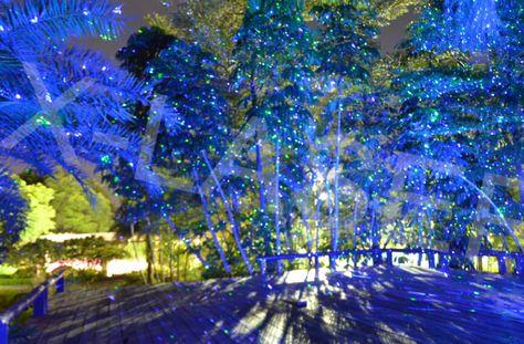 Outdoor Firefly Landscape Laser Light