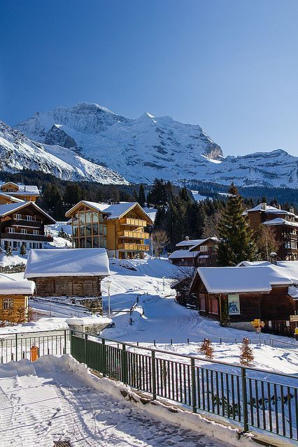 Jungfrau, Swiss Alps: View from Wengen