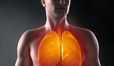 علاج جلطة الرئة بالأعشاب Natural Landmarks Herbalism Treatment
