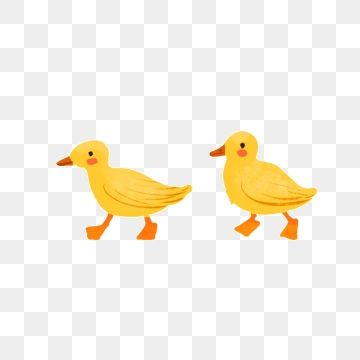 Cute Little Yellow Duck Duck Clipart Little Yellow Duck Beautiful Png Transparent Clipart Image And Psd File For Free Download In 2021 Watercolor Dog Duck Yellow Duck