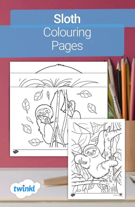 Help teach children about a sloth's natural habitat with these beautifully designed sloth colouring pages! The different designs show the sloth in its natural poses of chilling out, relaxing on a branch and munching on a leaf - it's the perfect relaxation activity! This resource and more animal colouring sheets can be found on the Twinkl website - click to see more!   #sloths #sloth #colouring #mindfulnesscolouring #teaching #parents #homeeducation #homeed #twinkl #twinklresources #animals