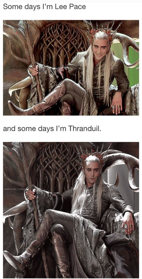 Some days I'm Lee Pace. Other days, I'm Thranduil. Today I happen to be Thranduil. Legolas And Thranduil, Tauriel, Gandalf, Aragorn, Thranduil Funny, Lee Pace Thranduil, Arwen, Beau Film, Fangirl
