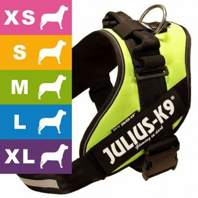 Julius K9 Idc Power Harness Neon Green Dog Harness Dog
