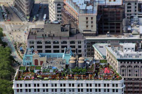 S 3 May 2014 Foto Nueva York Actividad En Terrazas