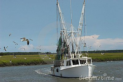 Shrimp boats, no two alike, play a key role in Carolina Slade's second story which takes place on St Helena Island near Beaufort, SC