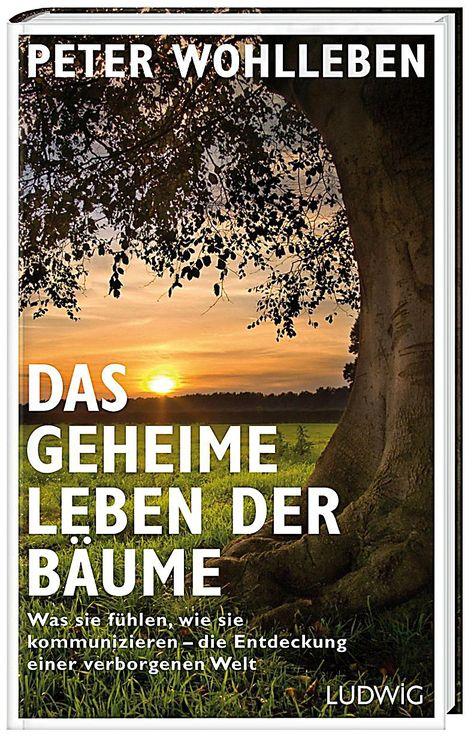 Das Geheime Leben Der Baume Peter Wohlleben Gebunden Buch In 2020 Bucher Geheim Und Leben