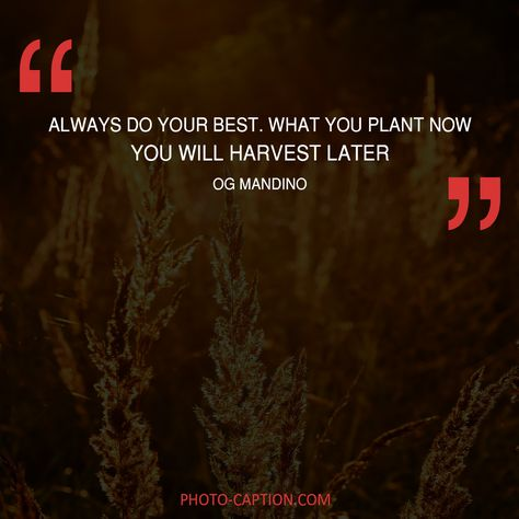 Top quotes by Og Mandino-https://s-media-cache-ak0.pinimg.com/474x/1e/47/3c/1e473cdcb7992eb909f694716ec98474.jpg