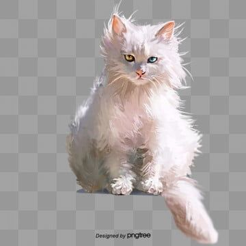 White Cat Hand Painted Elements Animal Pets Kitten Png Transparent Clipart Image And Psd File For Free Download White Cat Cat Clipart Cats Illustration