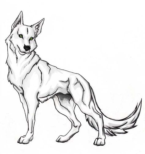 Wolf Brave Wolf Coloring Page Dog Coloring Page Moon Coloring Pages Animal Coloring Pages
