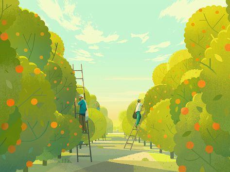 Orange Trees by Folio Illustration Agency