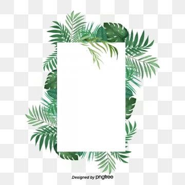 Small Green Fresh Tropical Plant Palm Rectangular Border Palm