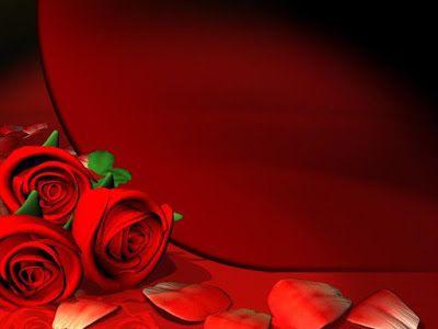 خلفيات للتصميم 2021 خلفيات فوتوشوب للتصميم Hd Red Roses Wallpaper Rose Wallpaper Red Flower Wallpaper