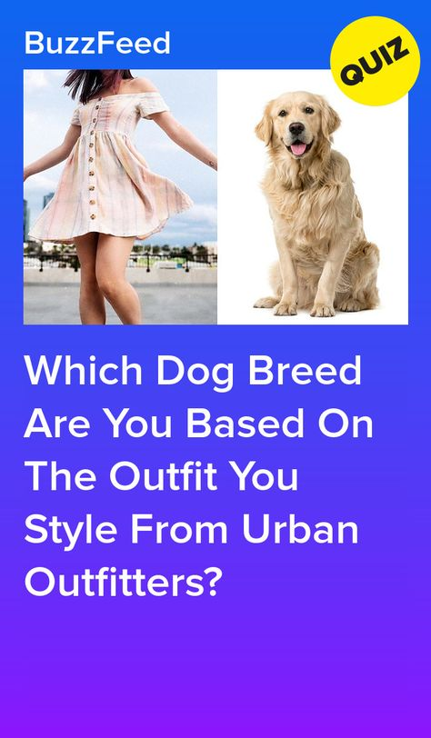 Which Dog Breed Are You Based On The Outfit You Style From Urban