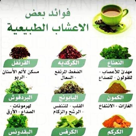 فوائد الأعشاب الطبيعية فائدة فوائد عشبة اعشاب طب نباتات زراعة طبيعة مفيدة شاي نعنع يانسون زعتر بابونج جميلة صحة Food Green Beans Blog