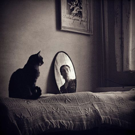Self Portrait with Cat, Gosia Janikdefinitely frida kahlo influenced black and white art photography Tap the link for an awesome selection cat and kitten products for your feline companion! Mirror Photography, Self Portrait Photography, Light Photography, Black And White Photography, Photography Tips, Self Portraits, Creative Photography, Vivian Maier, Fotografia Social