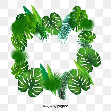 Tropical Palm Leaves Png Png Free Download Palm Tropical Leaves Leaves Png And Vector With Transparent Background For Free Download Tropical Leaves Tropical Plant Leaves