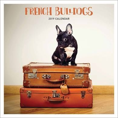 French Bulldog Calendar 2019 Christmasstockingfiller Dogcalendar Giftfordoglovers Affiliate Frenchbulldogcale Puppy Dog Pictures Dog Calendar Dog Pictures
