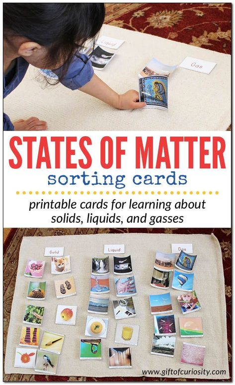 Free printable States of Matter sorting cards | Solid, liquid, and gas sorting cards for kids | preschool science | kindergarten science #printables #giftofcuriosity #Montessori || Gift of Curiosity