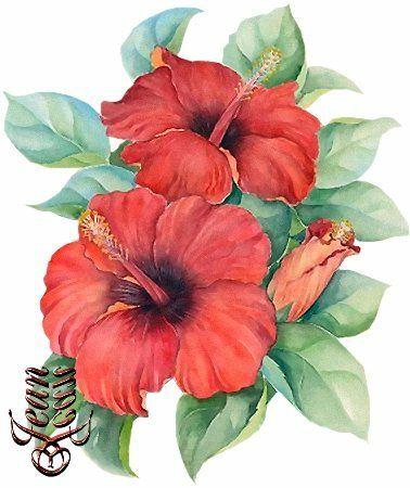 Lilian Montanha Arte Con Flores Flores Acuarela Flores Pintadas
