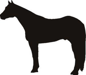 9 Horse Stencils Ideas Horse Stencil Stencils Horses