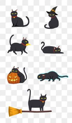 Halloween Black Cat Cat Animal Animal Clipart Wizard Hat Bell Png Transparent Clipart Image And Psd File For Free Download Black Cat Halloween Black Cat Illustration Black Cat