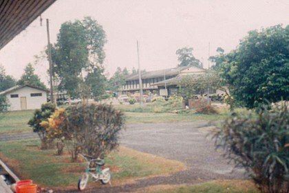 Sketsa Pemandangan Taman Sekolah Pemandangan Gambar Botani Sketsa