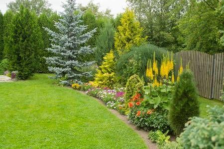 Hermoso jardín con flores y setos   Plantas de exterior, Setos, Jardines