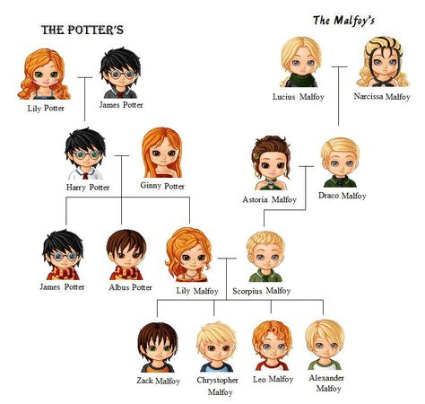 The potter and malfoy family tree by sophiafreak7797