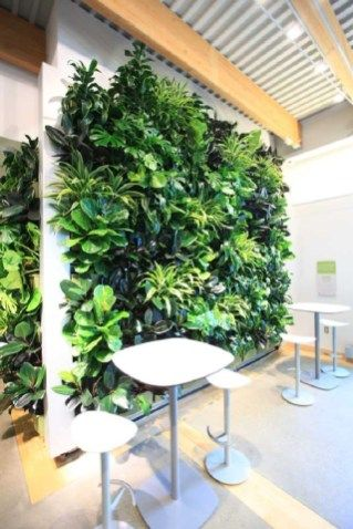 Gorgeous Indoor Living Wall Planter Design Ideas Picture 15