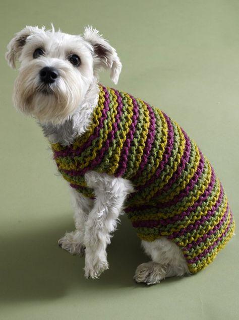 dog sweater crochet pattern easy