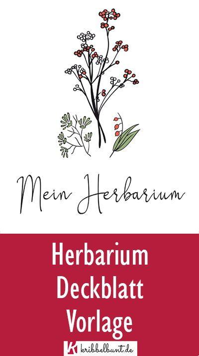 Herbarium Gestalten Vorlage Anleitung Kinder Diy Trends