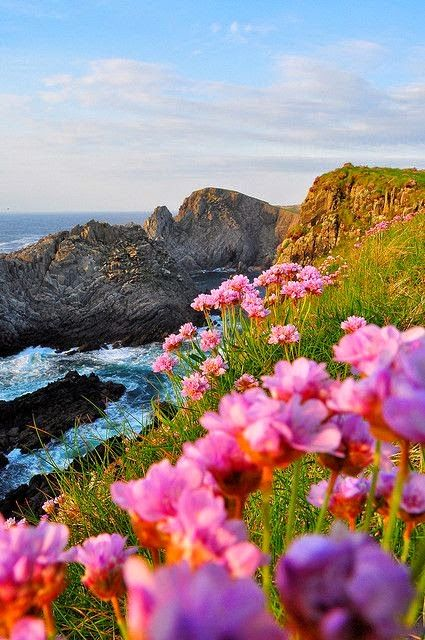 ภาพสวย ว ว ธรรมชาต ดอกไม สวยมาก Live Ireland Landscape Irish Landscape Landscape Photography