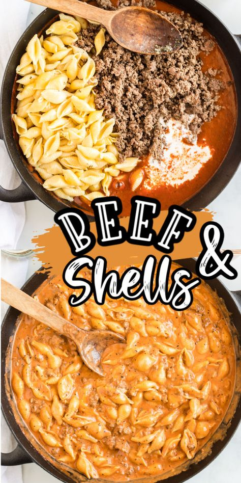 Creamy Beef & Shells - Ready in under 30 minutes! - Creamy Beef and Shells is a hearty pasta dish that is perfect for a quick dinner for the whole fami - Ground Beef Recipes For Dinner, Easy Dinner Recipes, Quick Easy Meals, Ground Beef Meals, Quick Meals For Dinner, Ground Beef Crockpot Recipes, Recipes Using Ground Beef, Ground Beef Pasta, Ground Beef Dishes