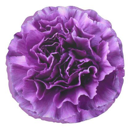 Purple Carnation Flower Round Pillow Zazzle Com Carnation Flower Purple Carnations Carnations