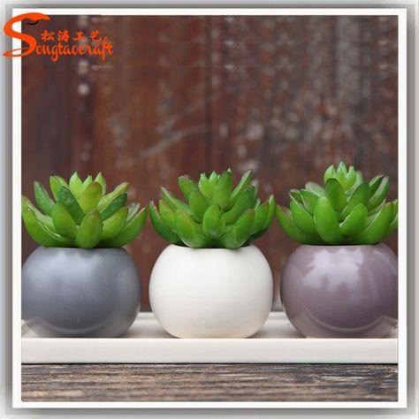 Plantes Artificielles Succulentes Gros Succulentes Petits Arbres