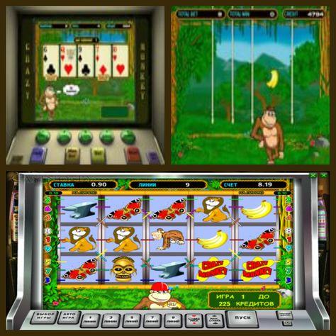 Обезьяны игровые аппараты играть бесплатно игровые автоматы убийство лисичанск